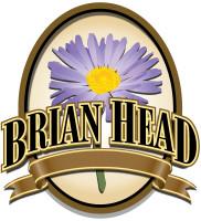 Brian Head Logo with Flower